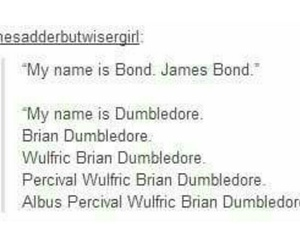 brian, dumbledore, and funny image