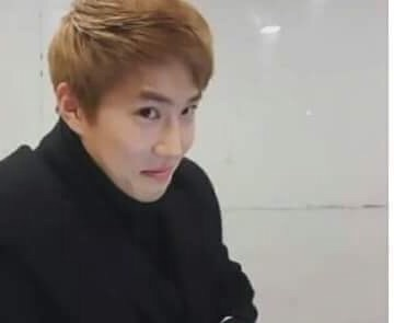 derp, suho, and exo image