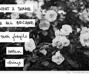 fragile, quote, and flowers image