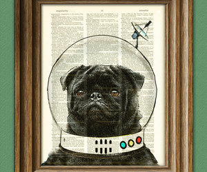 black pug, dictionary, and etsy image