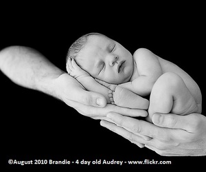 baby pictures, baby photos, and newborn photos image