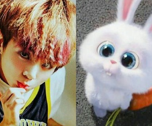 bunny, maknae, and bts image