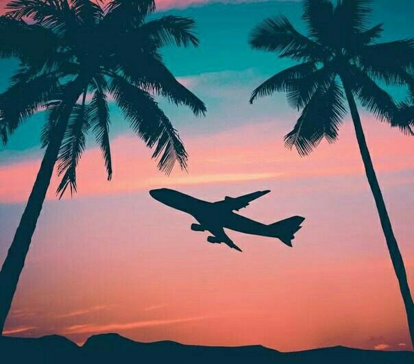 beach, plane, and sunset image