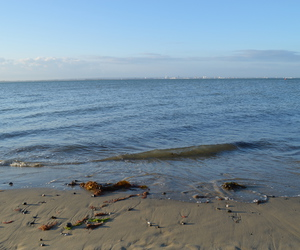beach, isle of wight, and ocean image