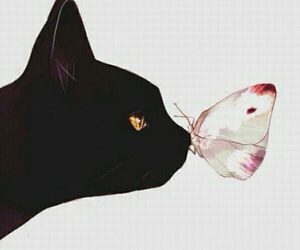 art, cat, and ❤ image
