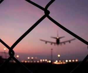 adventure, fence, and fly image