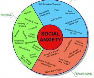 anxiety, social anxiety, and social image