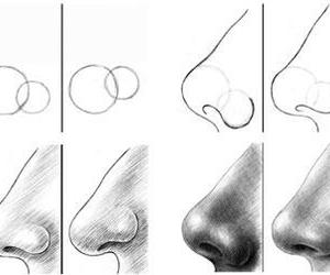 draw, how to, and nose image