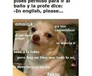meme, english, and funny image