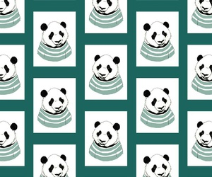 panda, wallpaper, and fondo image