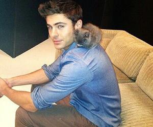 zac efron, cat, and boy image