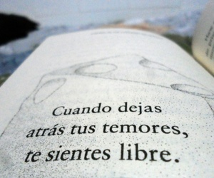 frases, free, and temores image