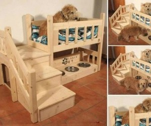diy dog bed, pallet projects, and pallet recycled image