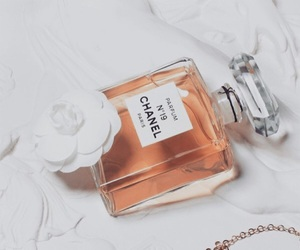 chanel, perfume, and Couture image