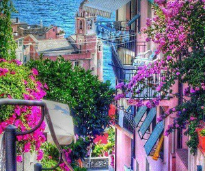 italy, flowers, and sea image
