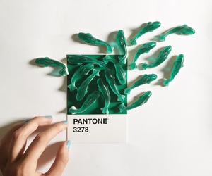 pantone, fish, and green image