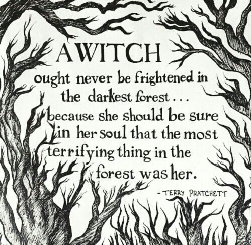 quote, witch, and forest image