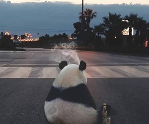 panda, smoke, and sad image