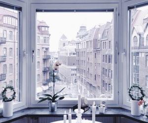 theme, window, and pink image