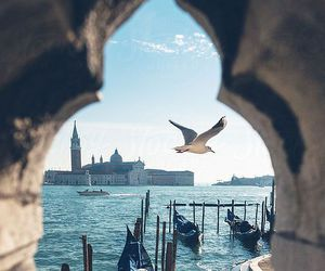 venice, travel, and italy image