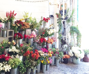 florist, flowers, and market image