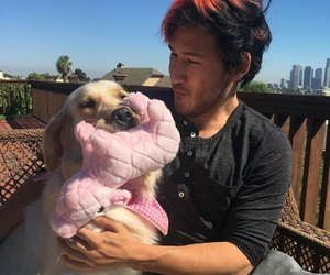 markiplier, dog, and chica image