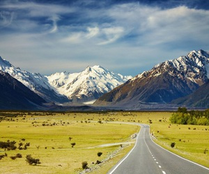 new zealand and road image