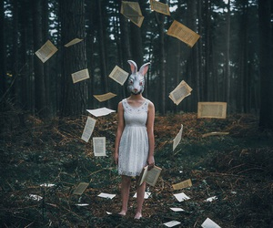 book, pages, and rabbit image