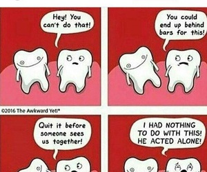 teeth, funny, and braces image
