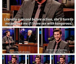 funny, the hunger games, and liam hemsworth image