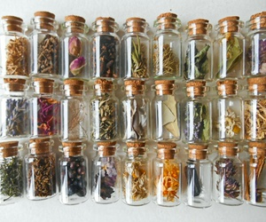 bottle and herbs image