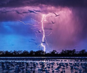nature, storm, and lightning image