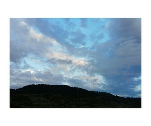 forest, nature, and sky image