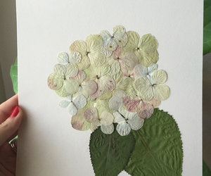 etsy, flower art, and hydrangea flower image