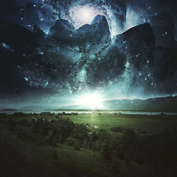 constellations, forest, and nature image