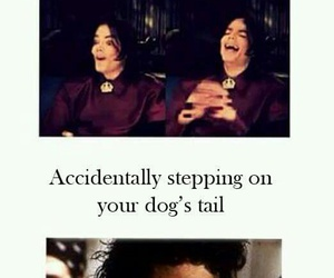 funny, meme, and michael jackson image