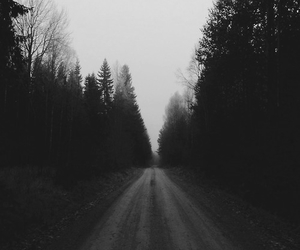 forest, road, and grunge image