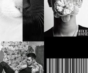 choi siwon, Collage, and siwon image