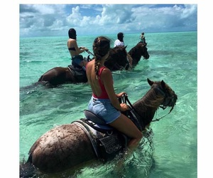 horse, water, and goals image