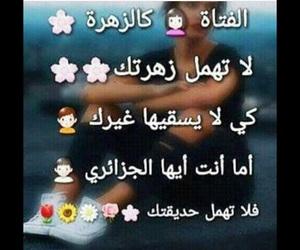 dz aisha image