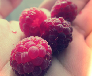 fruit, hand, and indie image