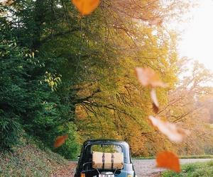 autumn, car, and fall image