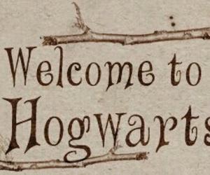 harry potter, hogwarts, and books image