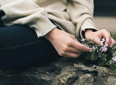 flowers, hands, and lovely image