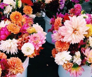 flowers, summer, and tumblr image