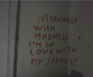 sadness, madness, and quotes image