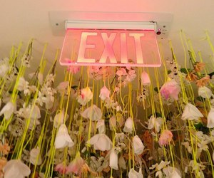 flowers, exit, and pink image