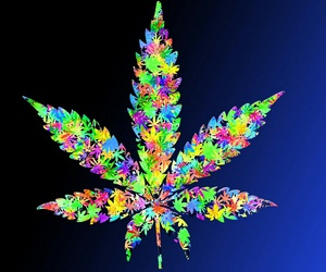 colourful, weed, and high grade image