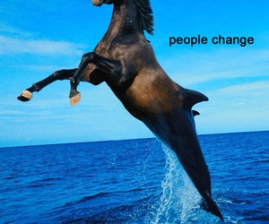 horse, funny, and change image