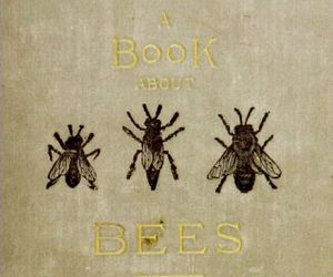 bees, book, and vintage image